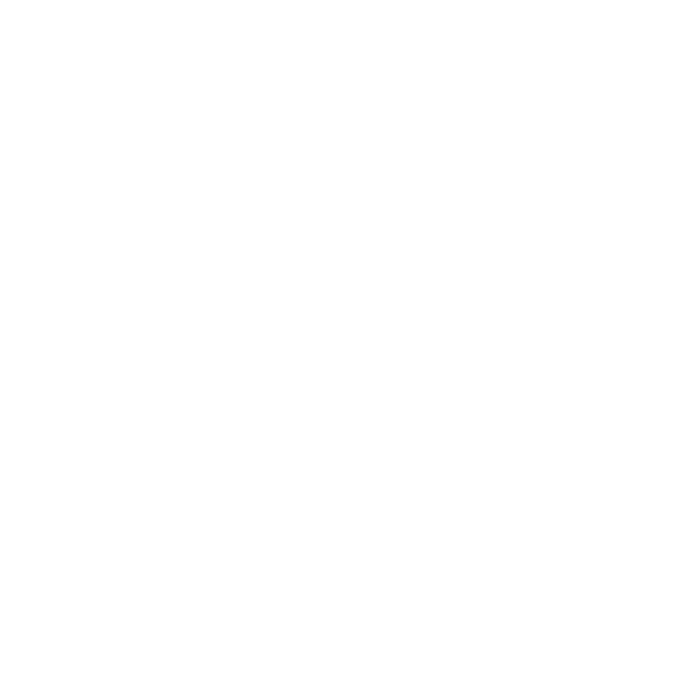 Oculus Transport